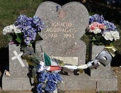 Ignacio Aguinaga