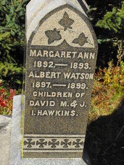 Albert Watson Hawkins
