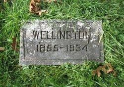 Wellington Elster