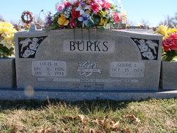 Louis Harvey Burks