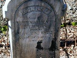 Henry L Newton