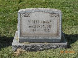 Violet <i>Adams</i> Waltenbaugh