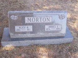 Alice Rachel <i>Pollard</i> Morton