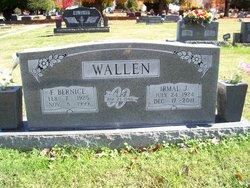 Irmal J. IJ Wallen