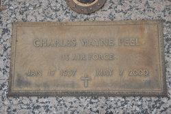 Charles Wayne Peel