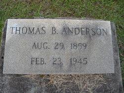 Thomas B. Anderson