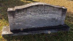 Andrew Jackson Bradley