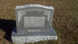 David Quincey Raynor