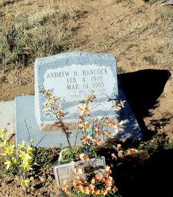 Andrew H Hancock