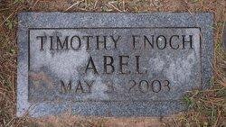 Timothy Enoch Abel