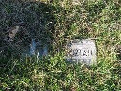 Cora Ellen <i>Druse</i> Oziah