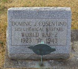 Pvt Dominic J. Consentino