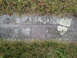 Elizabeth Mathilda <i>Carlson</i> Carlson