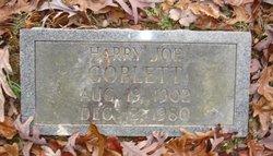 Harry Joe Goblett