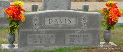 Barbara Ann <i>Hobby</i> Davis