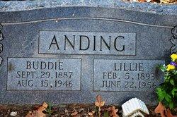 Buddie Anding