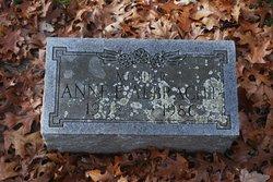 Anne E Albracht