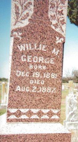 William Michael Willie George