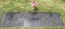 Ervin Peter Watson