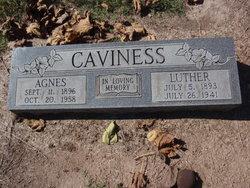 Agnes Caviness
