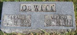 Sarah E <i>Large</i> DeWitt