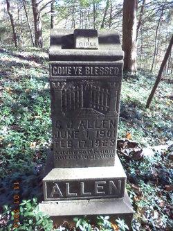 G. J. Allen