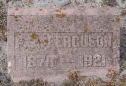 P. A. Ferguson