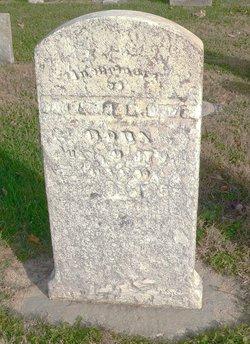 Catherine Margaret <i>Kophvel</i> Bower