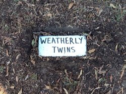Infant Twins Weatherly