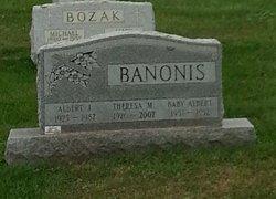 Albert J Banonis