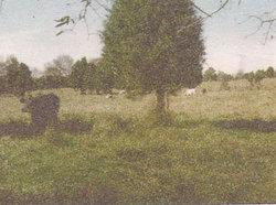 Elgin Family Cemetery