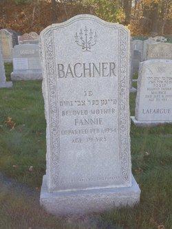 Frances Fannie <i>Cohen</i> Bachner