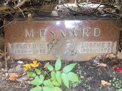 Floyd D Mesnard