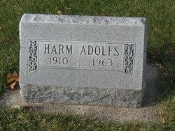 Harm Adolfs