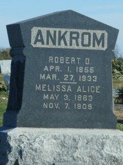 Robert David Ankrom