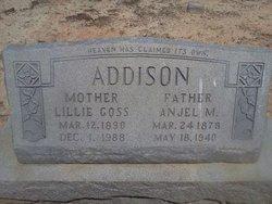 Anjel M. Addison