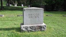 Clay Stone Briggs
