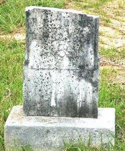 Abel Leroy Adams