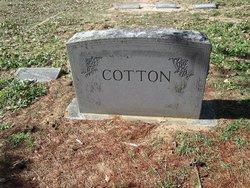 Frances Washington Cotton