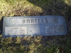 Gesina E <i>Busch</i> Bartels