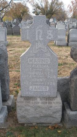 Amelia Marino