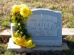 Carrie E. Gates