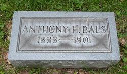 Antoine H Bals