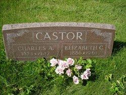 Elizabeth <i>Cheesman</i> Castor