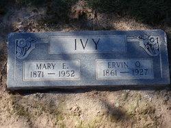 Mary E Ivy