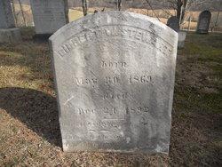 Gilbert William Stewart