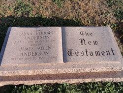 Anna W. <i>Heidorn</i> Anderson