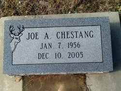 Joe A Chestang