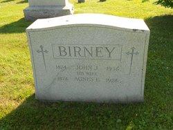 Agnes E. Birney