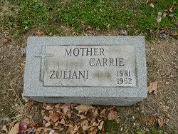 Carrie <i>DeMinico</i> Zuliani